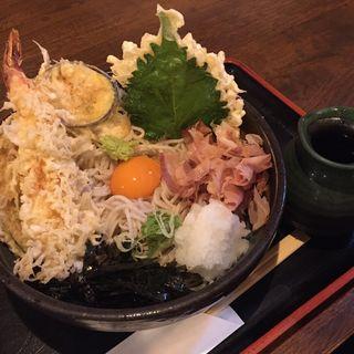 ぶっかけ天そば(ソば な也 (【旧店名】江戸そば水道筋店))