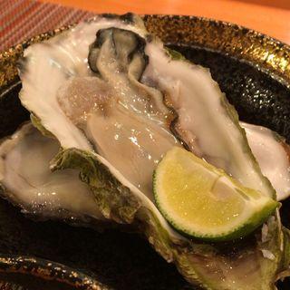 牡蠣(綾 (AYA))