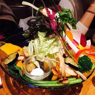 太陽をたっぷり浴びた野菜の贅沢バーニャカウダ (ファクトリーカフェ 梅田・茶屋町 (Factory Cafe))