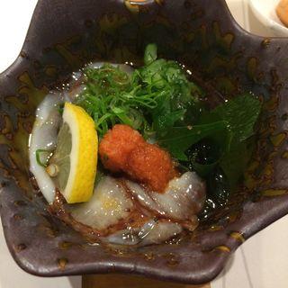 ナマコ酢(すし和食のお店田まい (たまい))
