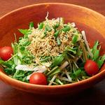 大根とじゃこと水菜の和風サラダ
