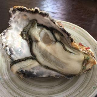 生牡蠣(かましま )