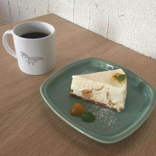 珈琲・レアチーズケーキ(ヨダか)