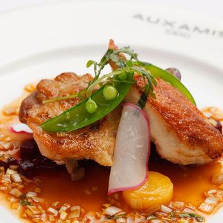 鶏肉のグリル(オザミトーキョー (AUXAMIS TOKYO))