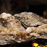牡蠣殻焼き
