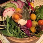朝採れ有機野菜さらだ