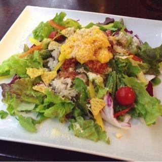 ハニータコライス(Apt Cafe.83)