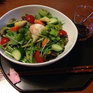 野菜たっぷりサラダの茶そば(冨月)