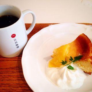 チーズケーキと珈琲(宮島珈琲)