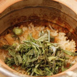 山菜の土鍋(旬菜料理 山灯  (やまびこ))