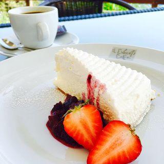 レアチーズケーキ(イルキャンティ・カフェ 江ノ島)
