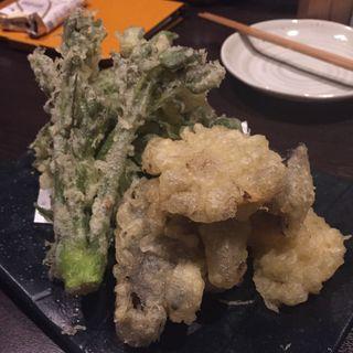 山菜の天ぷら(正味亭 尾和 )