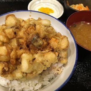 かき揚げ天丼(酒菜 みたに屋 )