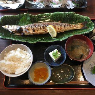 本カマス塩焼(めしや 大磯港)