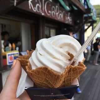 プレミアムピーナッツソフトクリーム(カイガラカフェ (KaIGaRa Cafe))