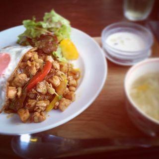 ガパオライス(熊猫 ダイナー (Kumaneco Diner))
