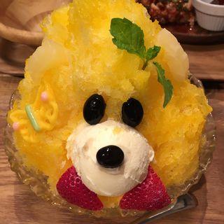 黄くま(ABC Canteen (【旧店名】おいもクリームと真面目ごはん。))