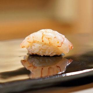 あまえびの握り(日本橋蛎殻町すぎた)