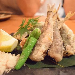 豆鯵とメヒカリの唐揚げ(魚輝 (ウオテル))