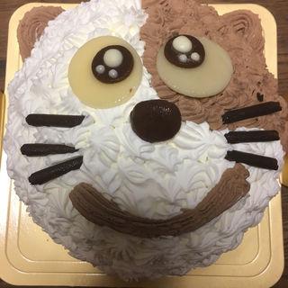 ねこちゃんバースデーケーキ(誕生日ケーキの幸せ工房)