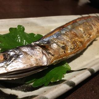 秋刀魚の塩焼き(雄屋 わさび (たけや わさび))