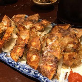 1.5皿餃子(麺の坊砦)