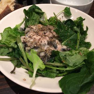 健康すぎる生牡蠣サラダ(牡蠣Bar (カキバー))