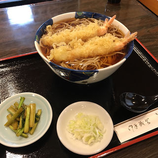天ぷらそば(北野家 支店 )