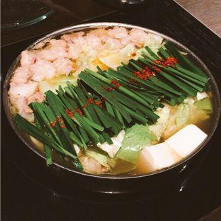 特製もつ鍋(しょうゆ風味)(黄金屋 新宿店 (こがねや))