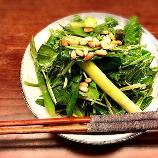 緑のおやさい(楽食酒 圓 (らくしょくしゅ まる))