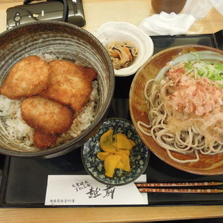 ソースカツ丼と越前そば小盛りセット(おそばだ うどんだ 越前)