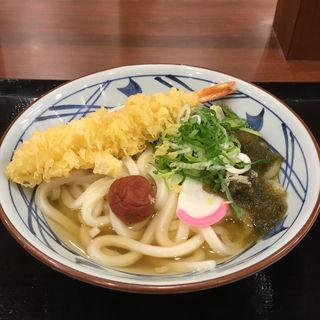 大海老うどん(大)(丸亀製麺 福岡賀茂店 )