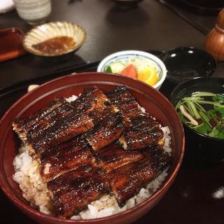 うな丼(鰻の千代幸 )