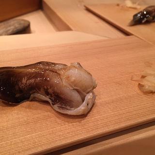 とり貝(鮨 太一)