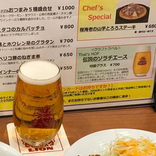 伝説のソラチエース(銀座ライオン 地下鉄名駅店 )