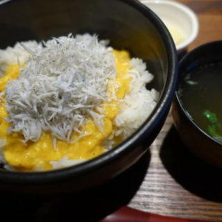 黄金のしらす丼(江ノ島小屋)