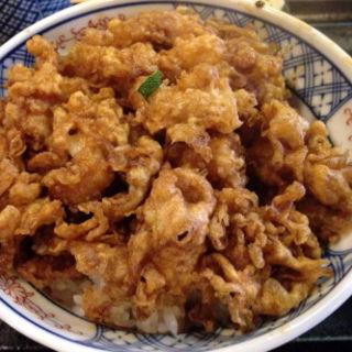 かき揚丼(天茂 (てんしげ))