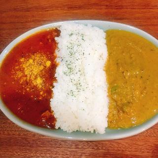 カレーマニアの日替わりカレー(朝めし酒場ナニコレ食堂)