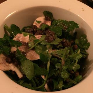 レンズ豆とクレソンとマッシュルームのサラダ(ekaki (エカキ))