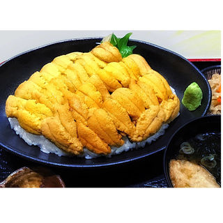 メガウニ丼(弁慶鮨 (【旧店名】弁慶))