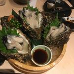 岩牡蠣(靜月 )
