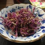 菊の花(きのちゃん家 )