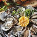 北海道厚岸の生牡蠣Lサイズ(10P)
