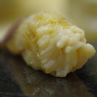 ほっき貝(鮨 心白 (スシ シンパク))