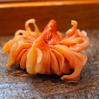 赤貝(寿司栄 )