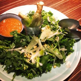 パクチーサラダ(Pak-chee Village  新宿店)