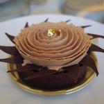チョコレートタイフーン