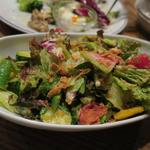 野菜いっぱいのガーデンサラダ