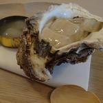 北海道産 岩牡蠣