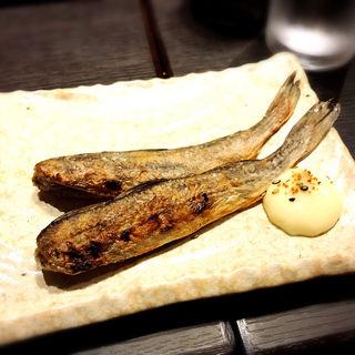 氷下魚(炉端のぬる燗 佐藤)